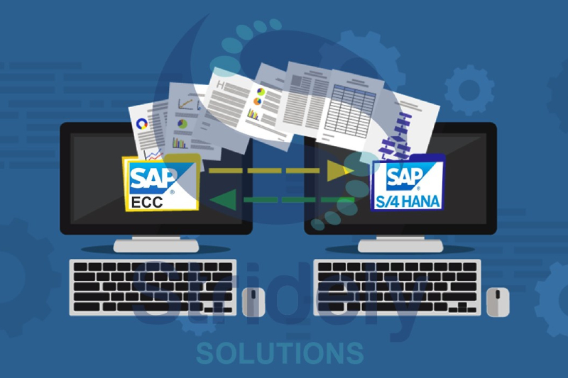 An Image Representing SAP Vs SAP S/4 HANA